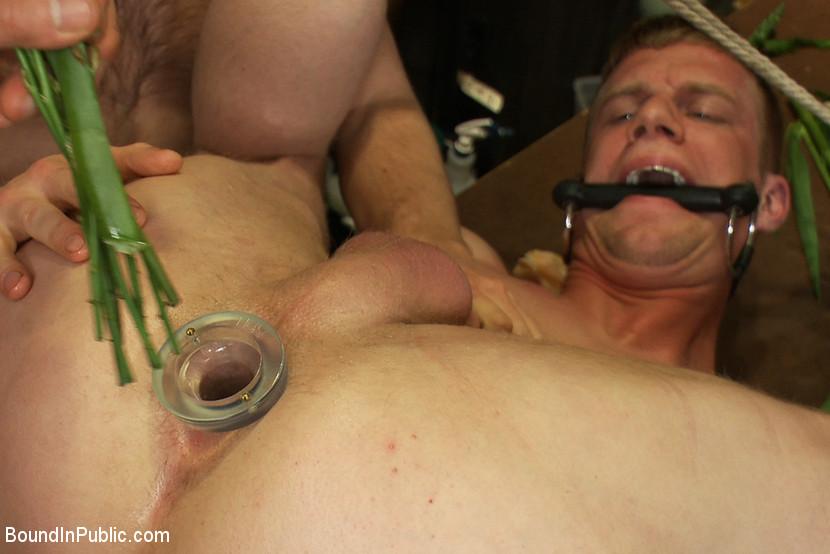 Bdsm male humiliation
