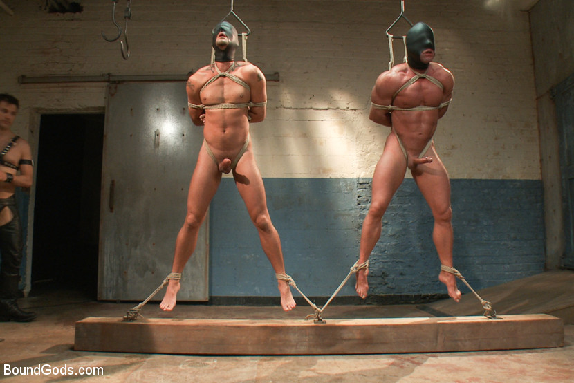 most challenging suspensions in the history of Bound Gods