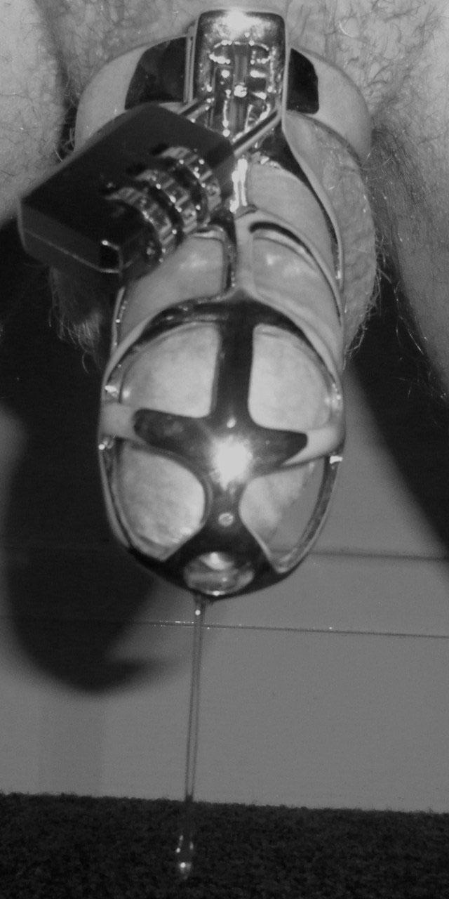 Metalbond chastity 07