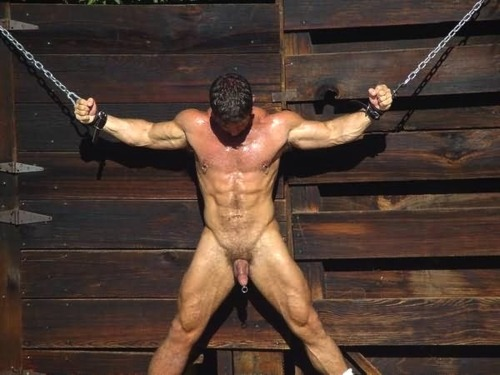 Metalbond gay bondage blog 10