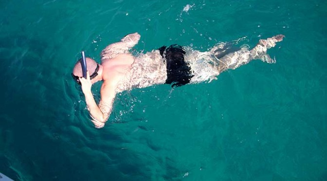 While I was snorkeling in the Caribbean recently …