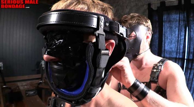 Four-point restraint with head immobilization and e-stimulation