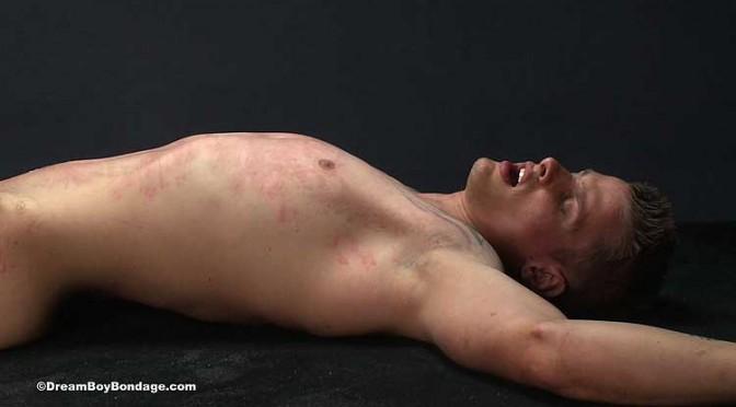 Pictures: Seth at Dream Boy Bondage