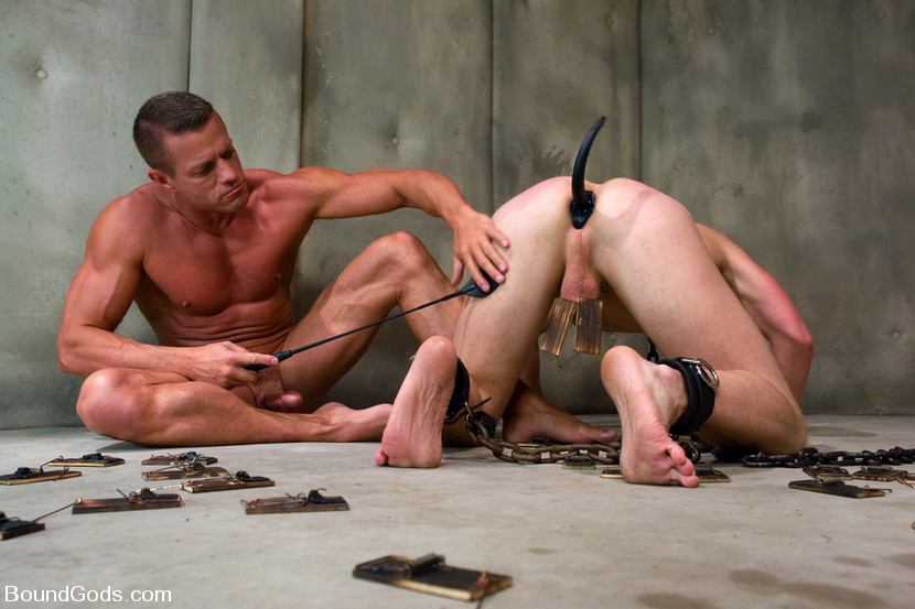 MetalbondNYC_forced_dog_training_02