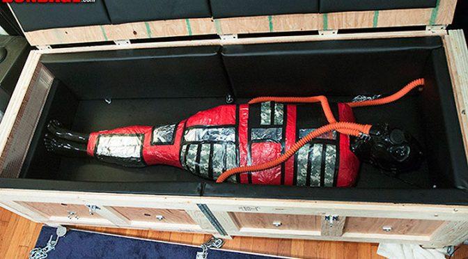 Mummified and boxed