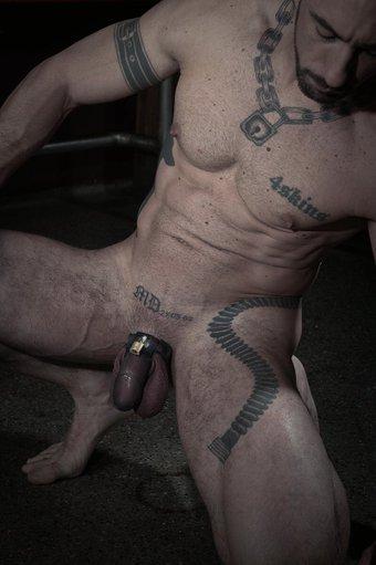 gay muscle video gallery