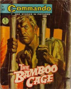 Bamboo Cage POW fiction