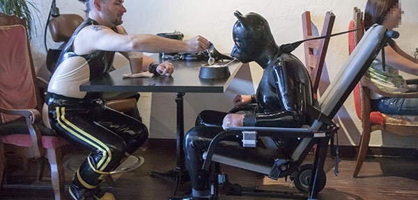 Rank takes Bouncer Pup on a stroll in a prisoner transport chair