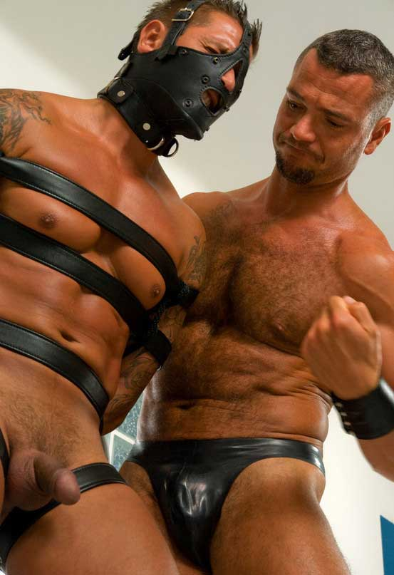 Is brandon iron gay
