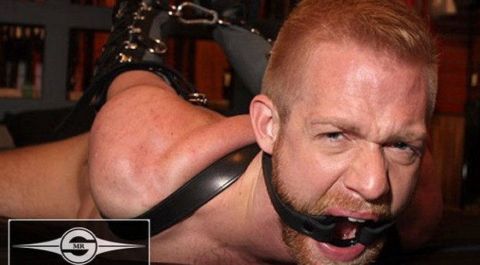 O-Ring Gag in neoprene or leather