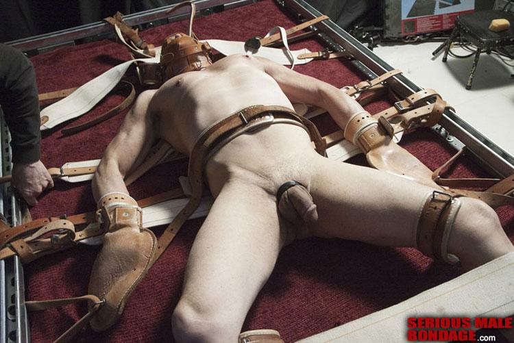 Gay male bondage s/m video clips