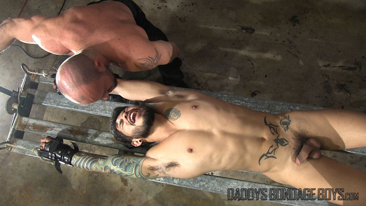 Hairless gay nude twinks