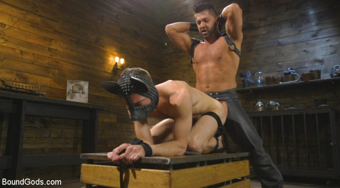 Rough puppy play with Dominic Pacifico and Alex Hawk