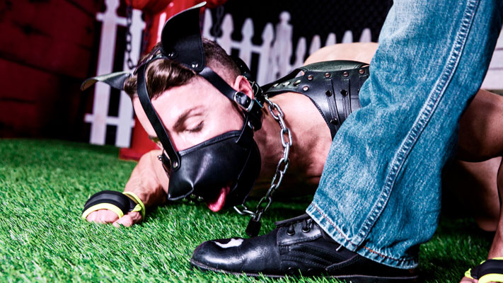 Trenton Ducati is an incredible puppy trainer