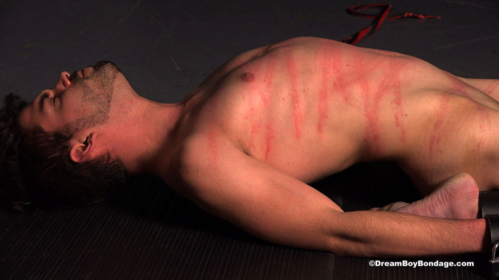 Video: Wyatt in rigid metal bar restraint