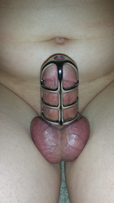 male chastity device