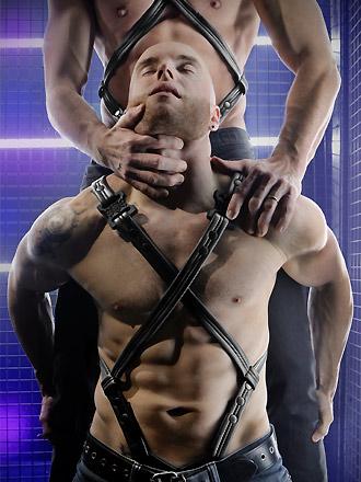 neoprene harness