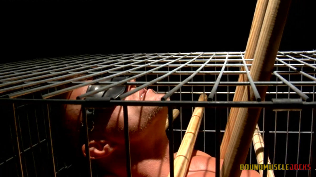 Tyler Saint in a cage