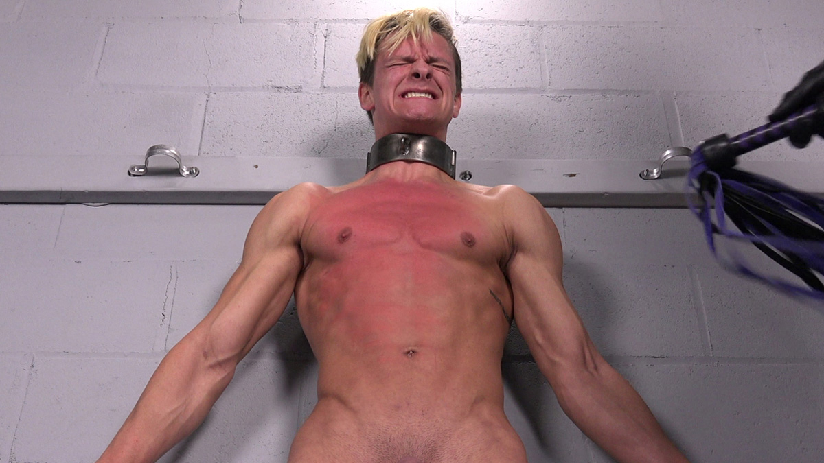 Video: Tough guy Johnny gets whipped on his muscular chest
