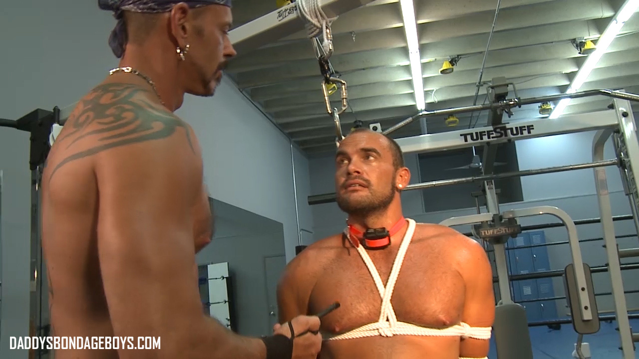 Video: Two muscle guys get into forced workout action with a shock collar