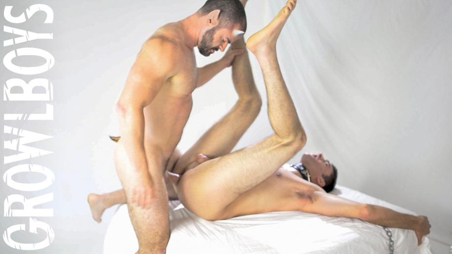 gay furry fucking