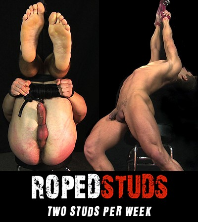roped studs gay bondage