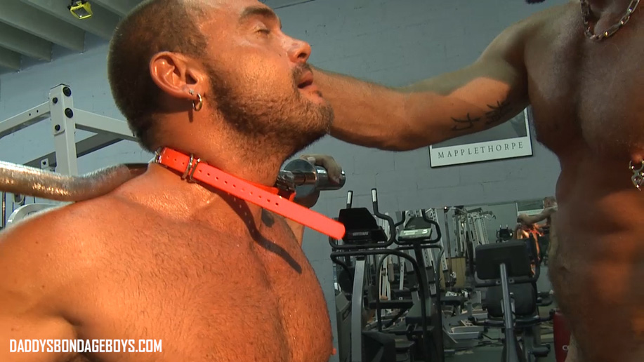 Pictures and video: Leg day at the gym with ball weights and shock collar