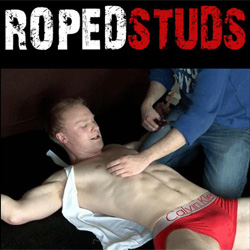 male bondage stories ropedweb