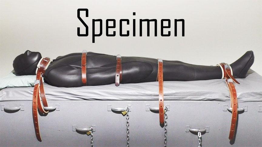 A bondage specimen