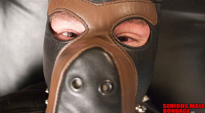 MindDrive in leather bondage