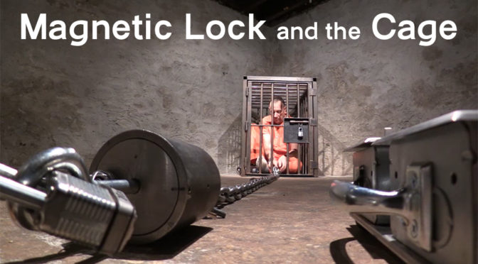 Magnetic lock and the cage