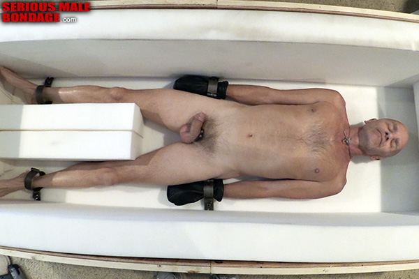 male bdsm confined to a box