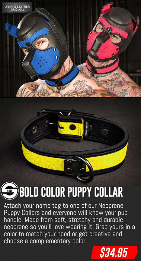 Neo Puppy Collar