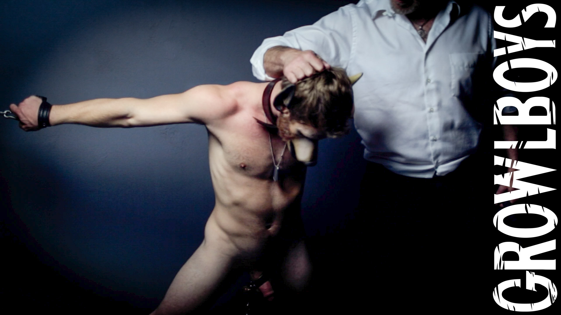 gay furry bondage porn